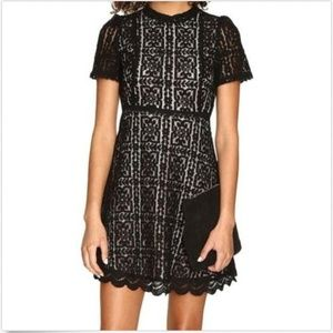 BB Dakota Women's Floral Lace Overlay A-Line Dress